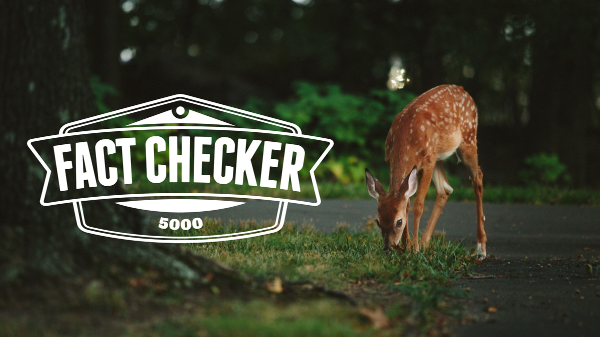 Fact Checker 5000 - the best fact checker on the internet